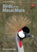 Birds of the Masai Mara cover
