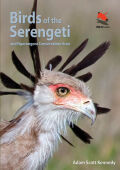 Birds of the Serengeti Cover