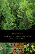 A Field Guide to the Ferns and Lycophytes of Louisiana