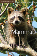 Mammals of Alabama Cover