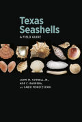 Texas Seashells: A Field Guide