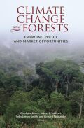 Climate Change and Forests Cover