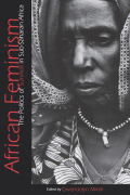 African Feminism Cover