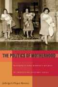 The Politics of Motherhood Cover
