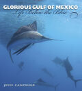 Glorious Gulf of Mexico Cover