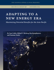 Adapting to a New Energy Era