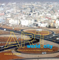 Art World City: The Creative Economy of Artists and Urban Life in Dakar