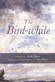 The Bird-while