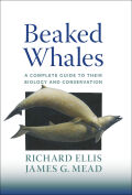 Beaked Whales Cover
