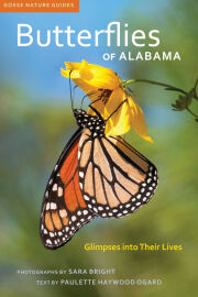 Butterflies of Alabama