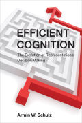 Efficient Cognition: The Evolution of Representational Decision Making
