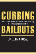 Curbing Bailouts Cover