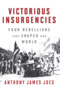 Victorious Insurgencies cover