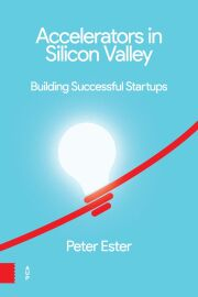 Accelerators in Silicon Valley