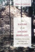 The Nature of an Ancient Maya City