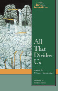 All That Divides Us Cover