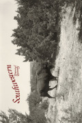 <i>Border Sanctuary: The Conservation Legacy of the Santa Ana Land Grant</i> by M. J. Morgan (review)